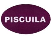 Piscuila